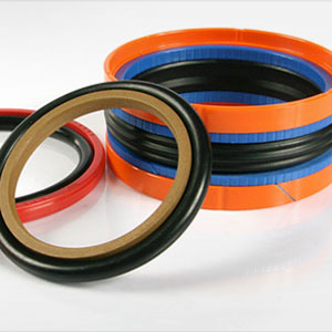 Hydraulic Amp Pneumatic Seals Supplier Symmetrical Seals